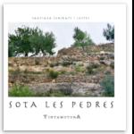 Sota les pedres de Santiago Subirats